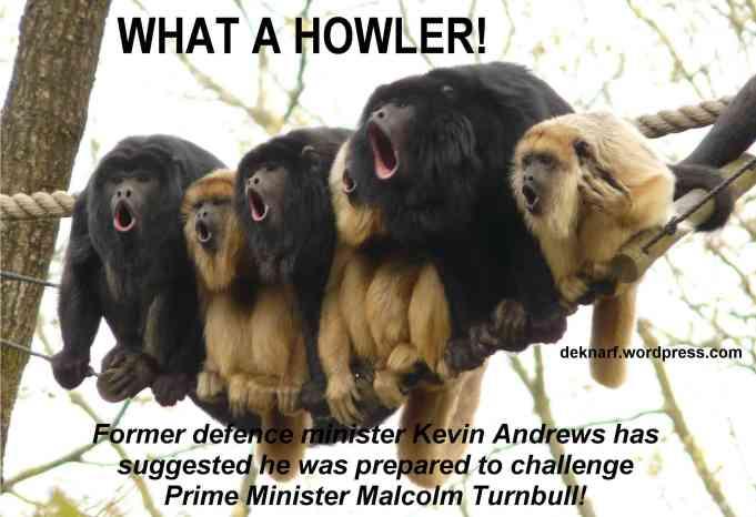 Andrews Challenge Monkeys