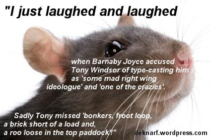 Mad Joyce Rat