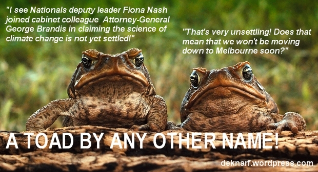 AGW Nash Brandis Toads