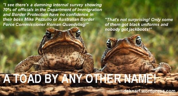Border Farce Revelations