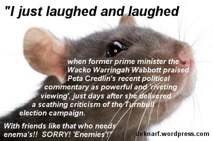 Credlin Wabbot Rat