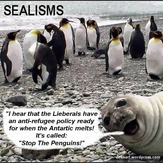 Sealism Penguin Stop