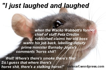 Horse Shit Rat
